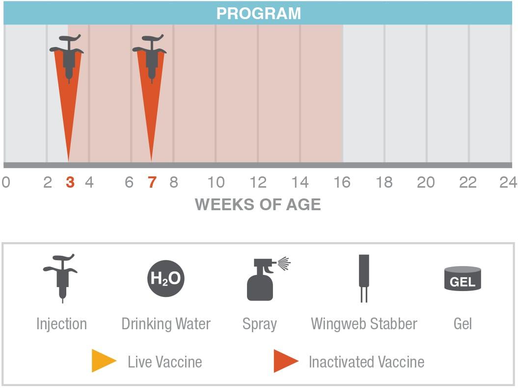 Izovac FC Vaccination Program