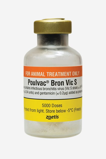Poulvac Bron VicS Single