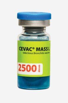 Cevac Mass L